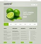 Flash CMS  Template 42331