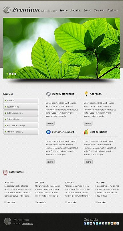ADOBE Photoshop Template 42405 Home Page Screenshot
