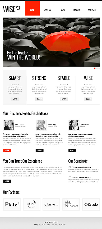 Drupal Template 42412 Main Page Screenshot