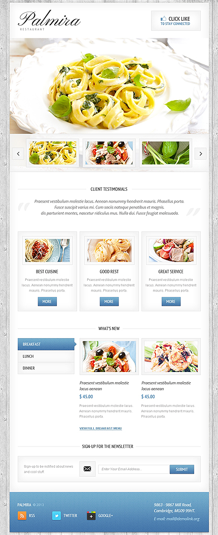 ADOBE Photoshop Template 42513 Home Page Screenshot
