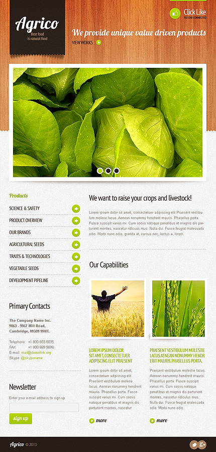 ADOBE Photoshop Template 42514 Home Page Screenshot