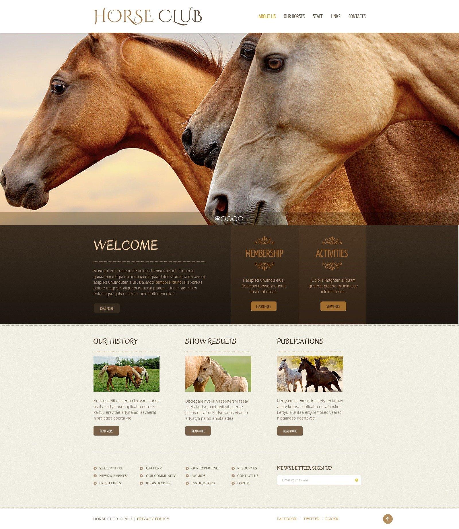 Modèle Web pour sites de chevaux #42521