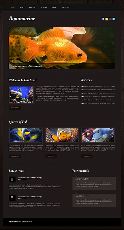 ADOBE Photoshop Template 42693 Home Page Screenshot