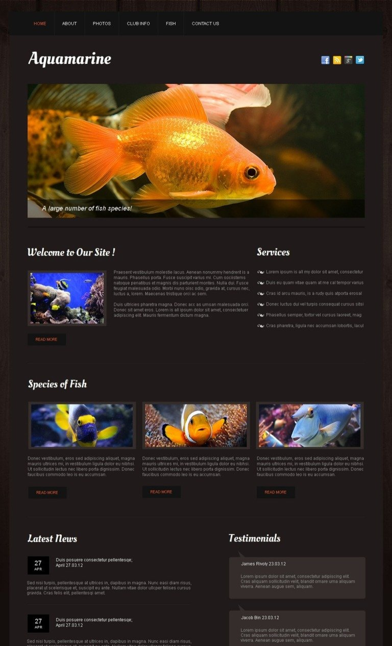 Fish Moto CMS HTML Template New Screenshots BIG