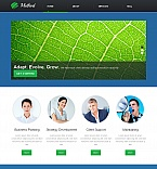 Moto CMS HTML  Template 42701
