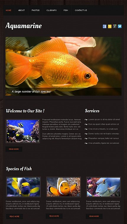 ADOBE Photoshop Template 42754 Home Page Screenshot