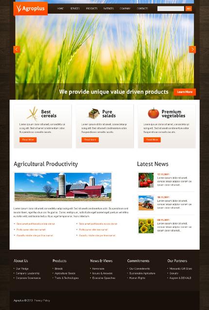 PSD макет сайта №42773