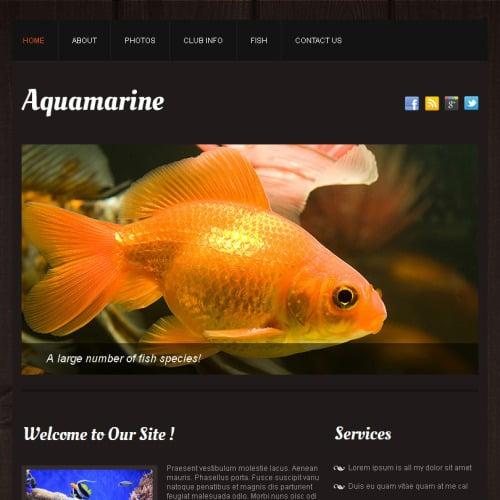 Aquamarine - Facebook HTML CMS Template