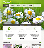 Website  Template 42918