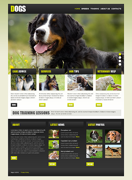 Animals Amp Pets Html Template No 42975 Html Templates