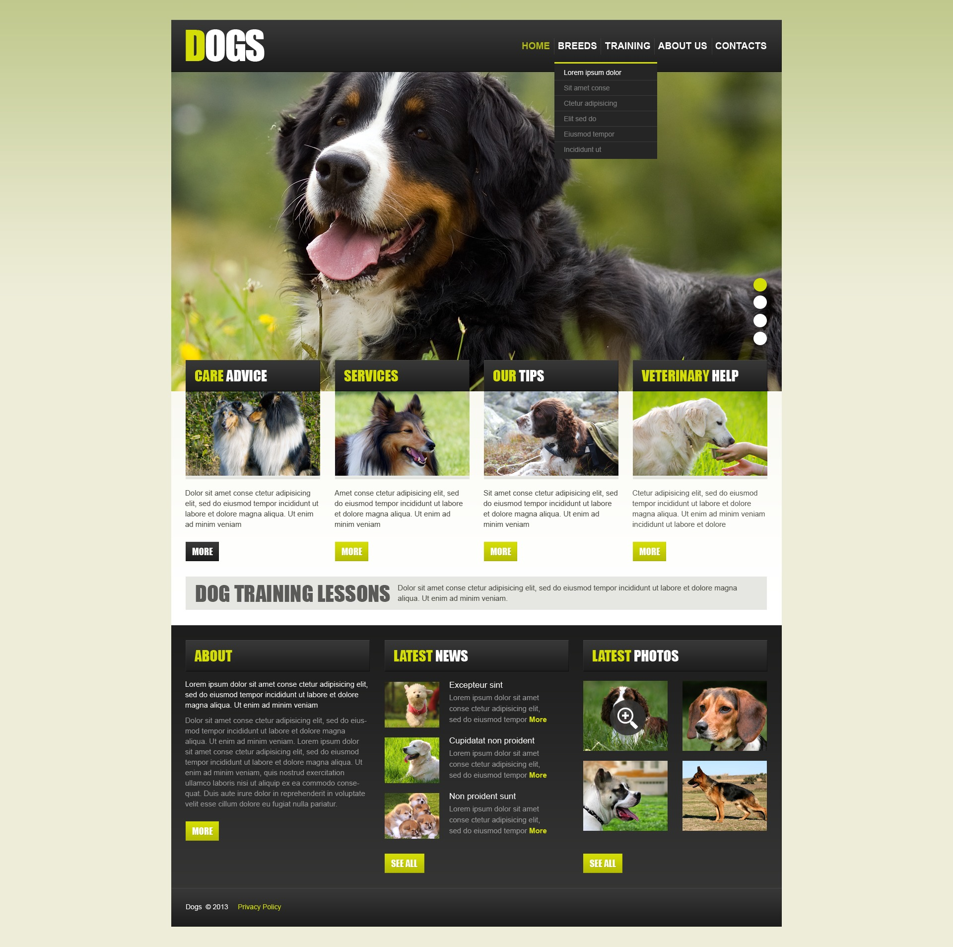 Dog Website Template #42975