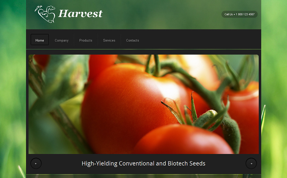 Plantilla Moto CMS HTML #43025 para Sitio de Agricultura New Screenshots BIG