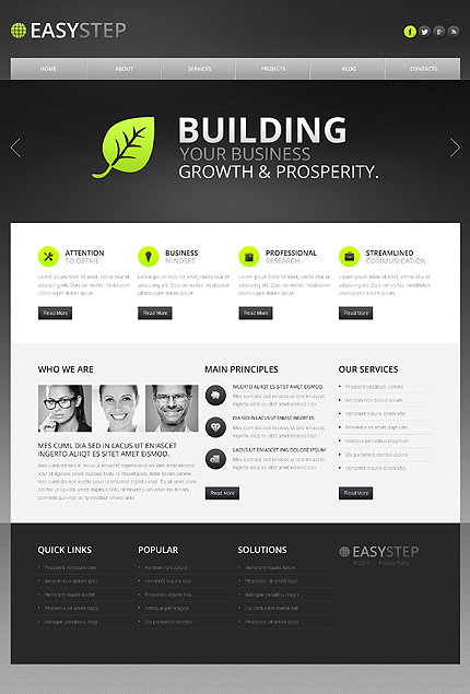Drupal Template 43170 Main Page Screenshot