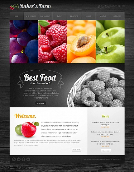 ADOBE Photoshop Template 43400 Home Page Screenshot