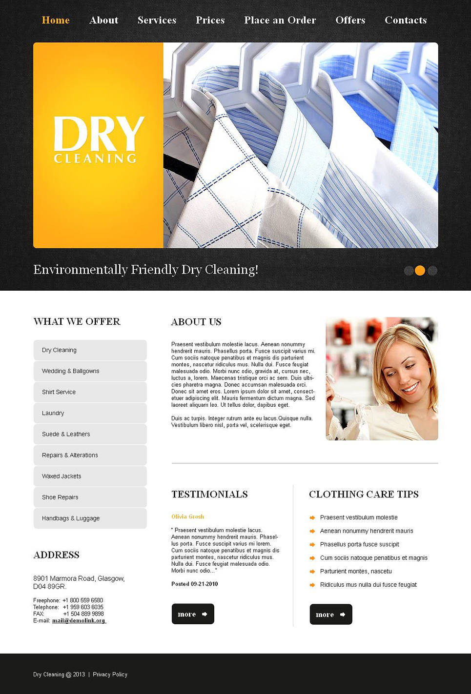 Dry-Сleaner's Website Template with Black-and-White Design - image