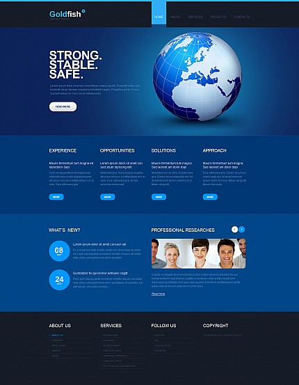 ADOBE Photoshop Template 43606 Home Page Screenshot