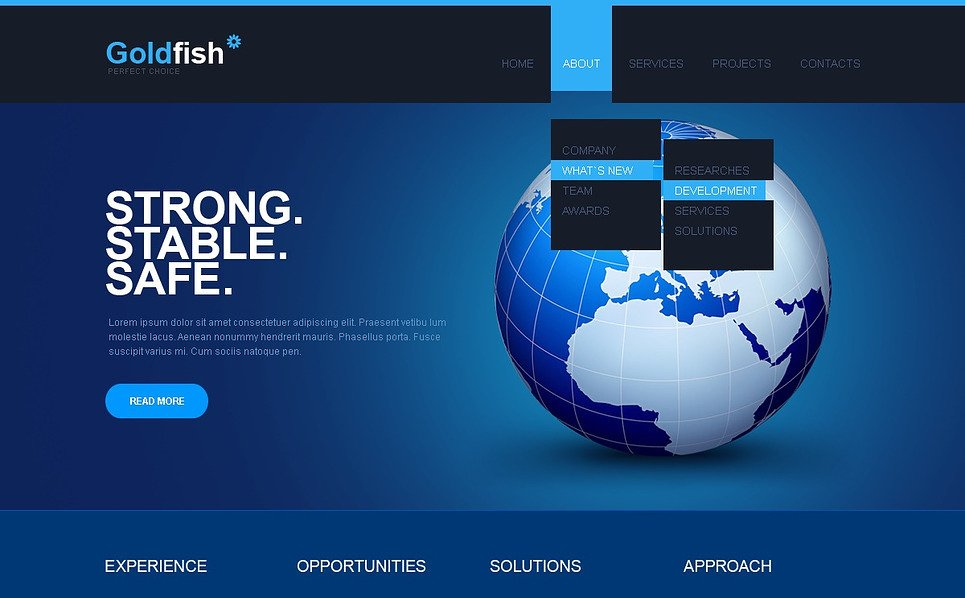 Premium Flash CMS Template over Financieel Adviseur  New Screenshots BIG