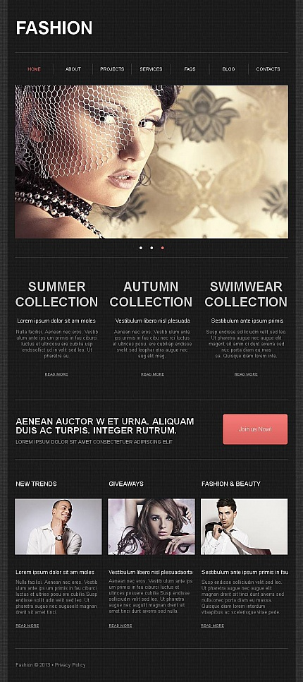 ADOBE Photoshop Template 43677 Home Page Screenshot