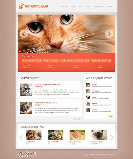 ADOBE Photoshop Template 43747 Home Page Screenshot