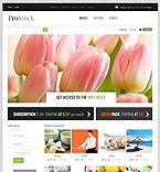 Art & Photography VirtueMart  Template 43754