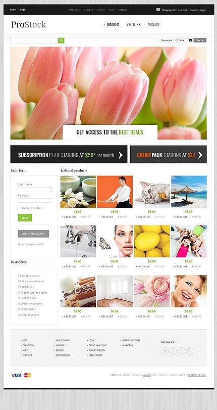 ADOBE Photoshop Template 43754 Home Page Screenshot