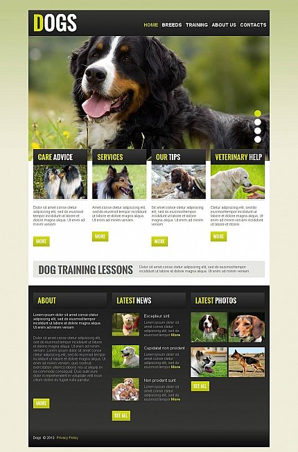 ADOBE Photoshop Template 43822 Home Page Screenshot