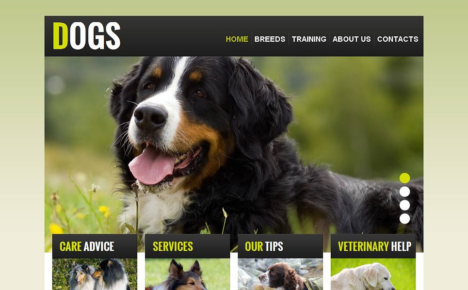 Template Moto CMS HTML  #43822 per Un Sito di Cani New Screenshots BIG