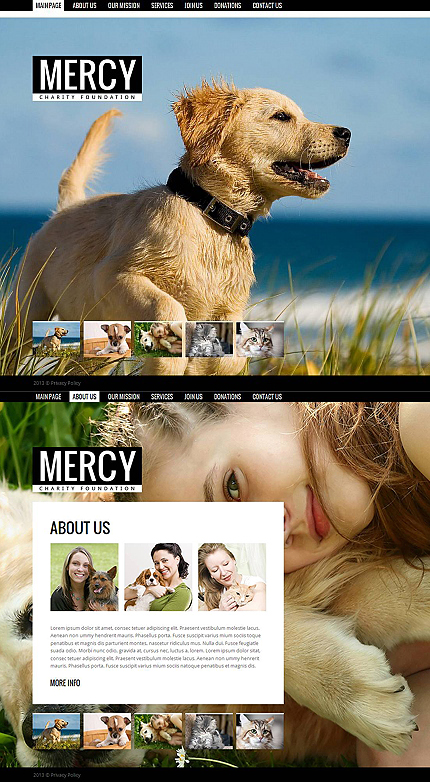ADOBE Photoshop Template 43829 Home Page Screenshot