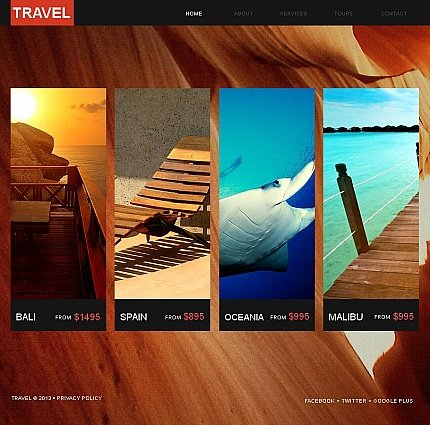 ADOBE Photoshop Template 43847 Home Page Screenshot