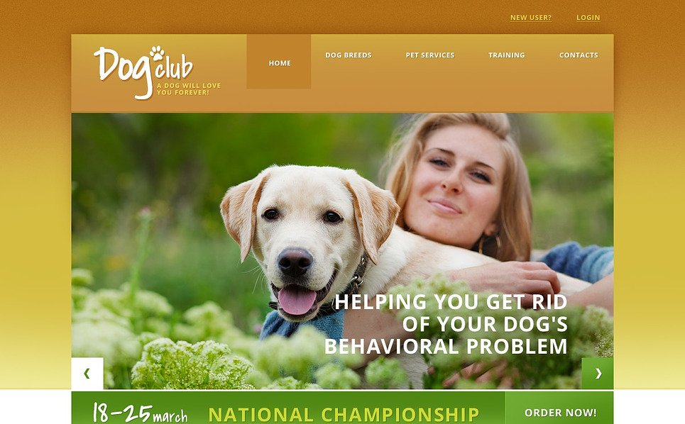 Responsive Website template over Honden New Screenshots BIG