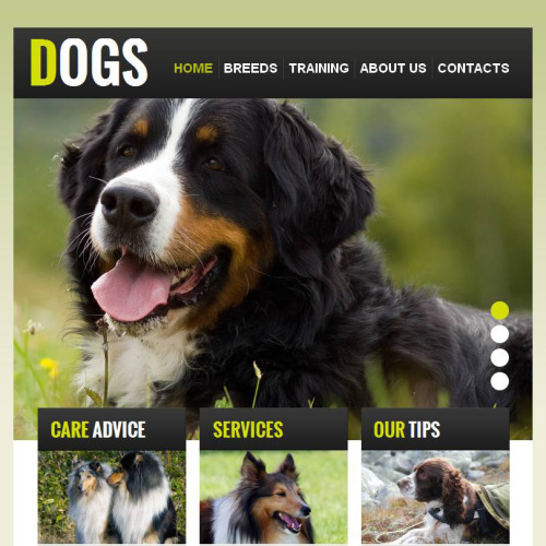 Dogs - Facebook HTML CMS Template