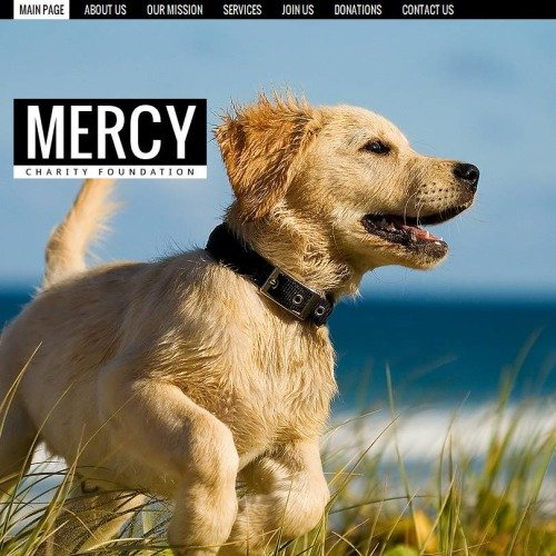 Mercy - Facebook HTML CMS Template
