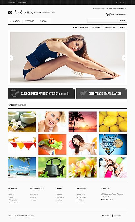ADOBE Photoshop Template 44055 Home Page Screenshot