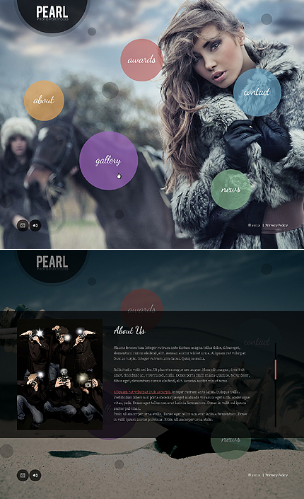 ADOBE Photoshop Template 44119 Home Page Screenshot