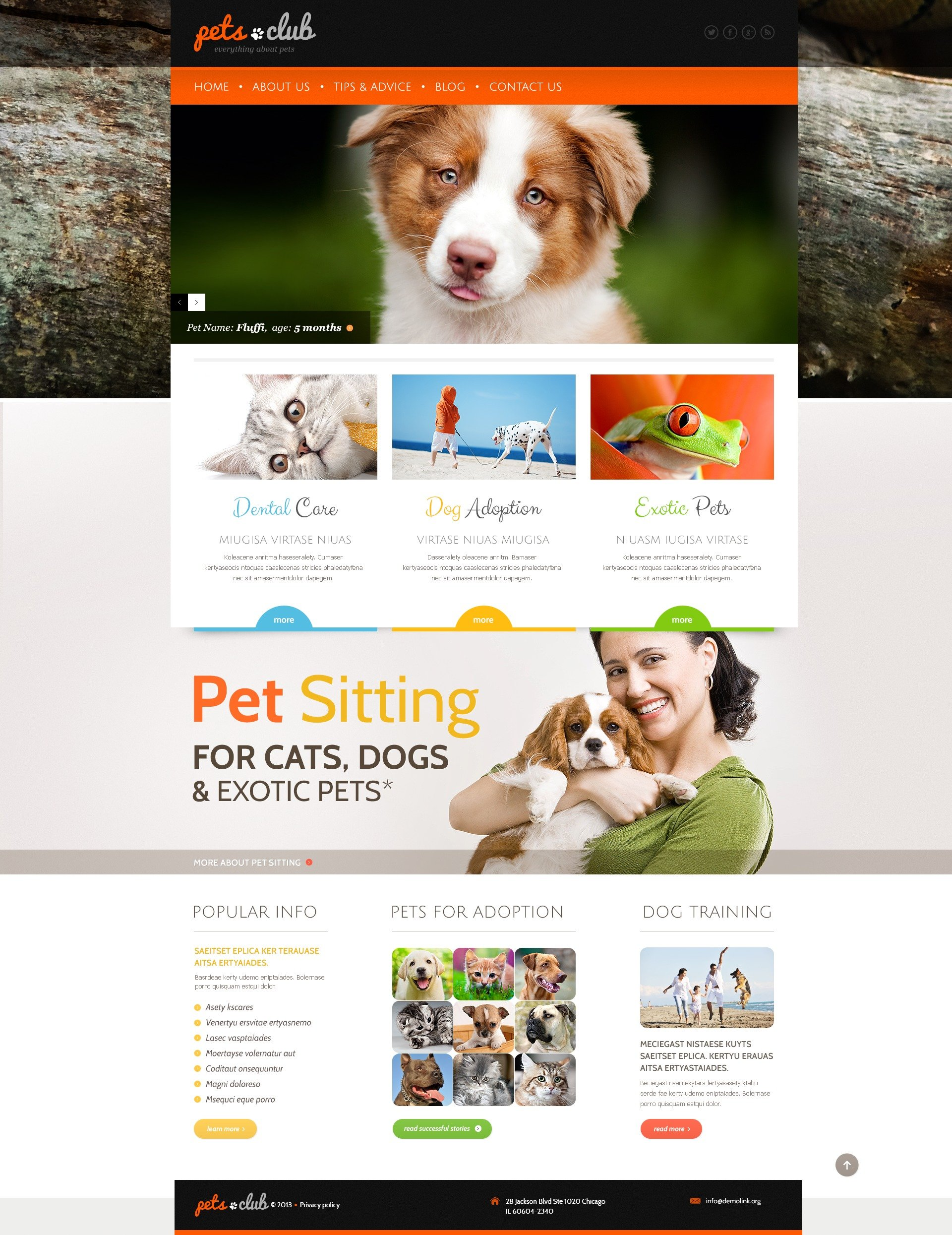 "Modello WordPress Responsive #44159 ""White Animals & Pets"""