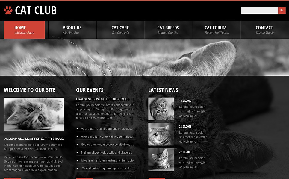 Website Vorlage für Katze New Screenshots BIG