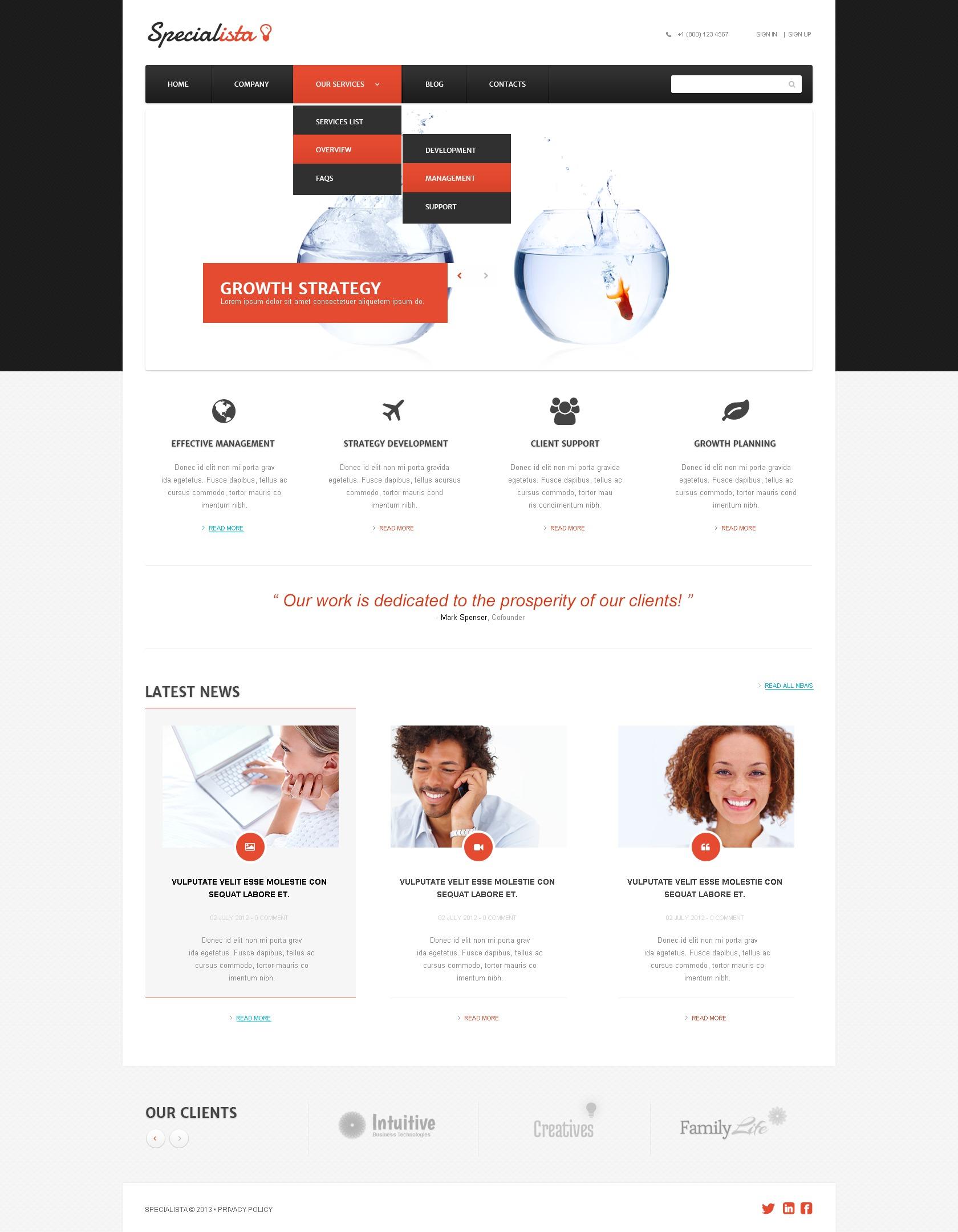 """Effective Management Online"" Responsive WordPress thema №44284 - screenshot"