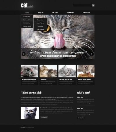 Cat Responsive Web Sitesi Şablonu