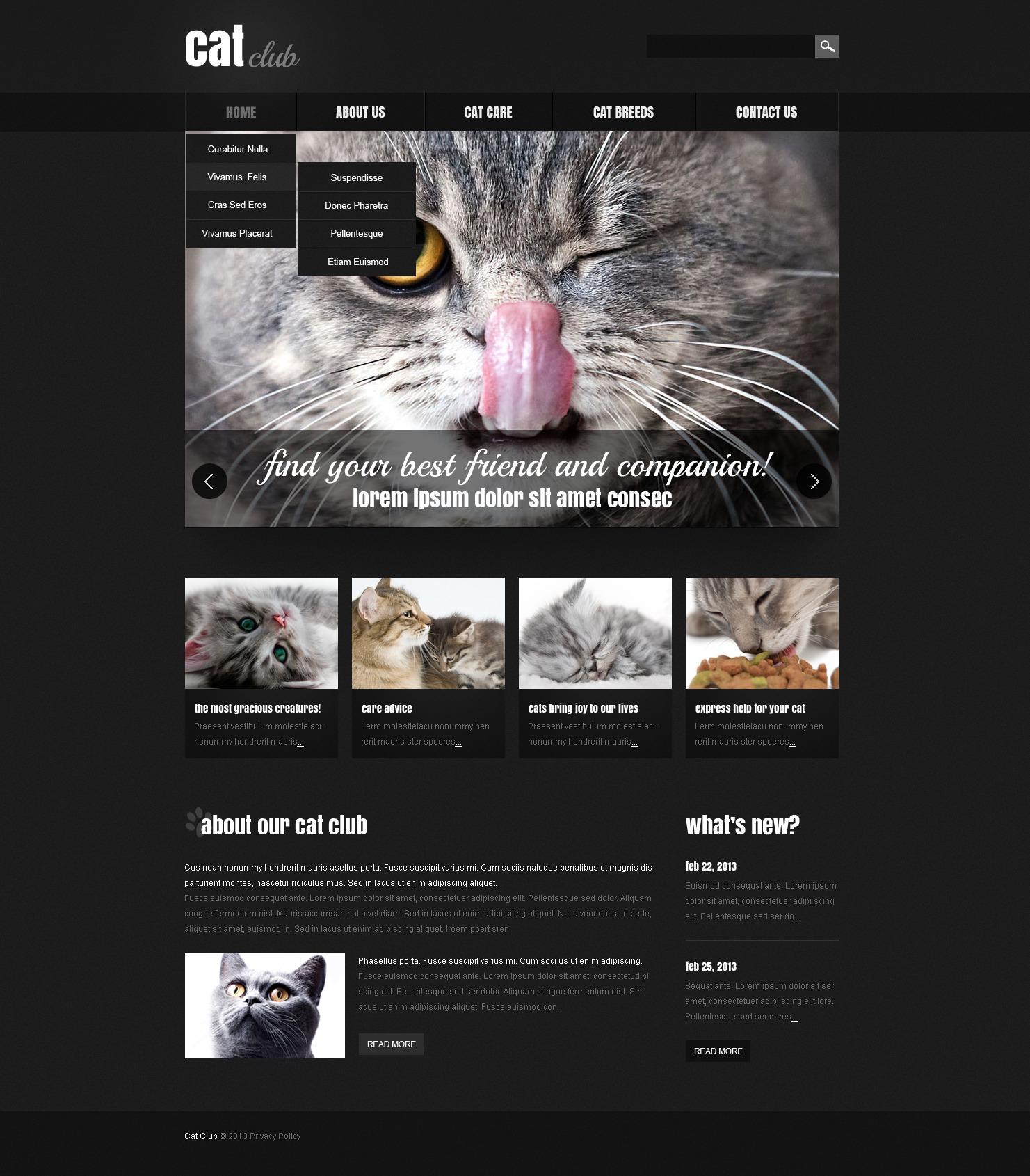 Reszponzív Macskák témakörű Weboldal sablon 44278