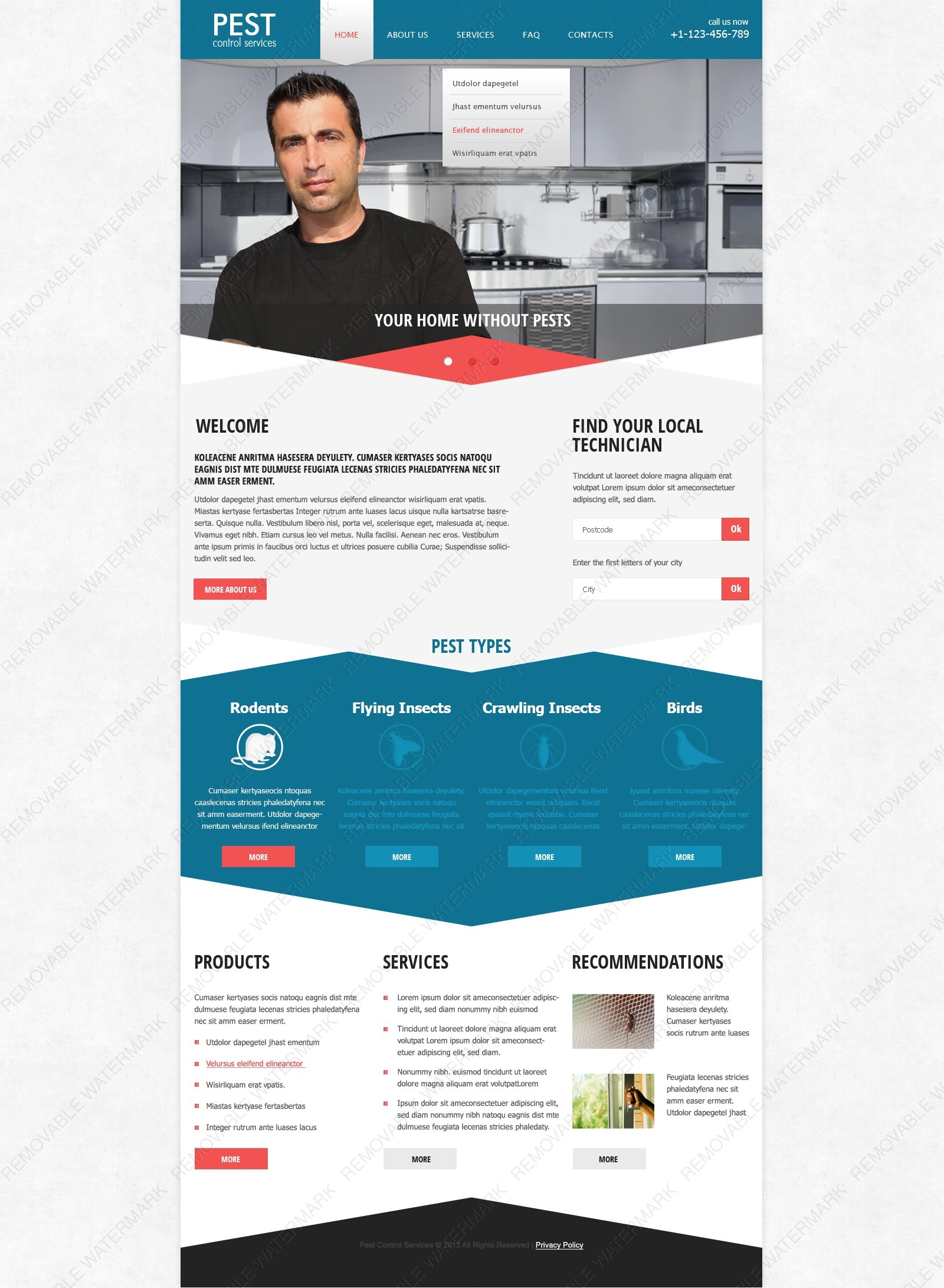 pest control responsive website template 44400 by wt. Black Bedroom Furniture Sets. Home Design Ideas