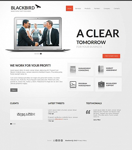 ADOBE Photoshop Template 44458 Home Page Screenshot
