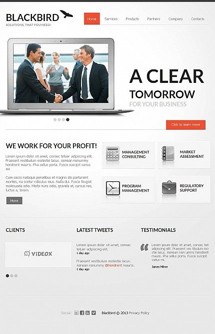 ADOBE Photoshop Template 44479 Home Page Screenshot