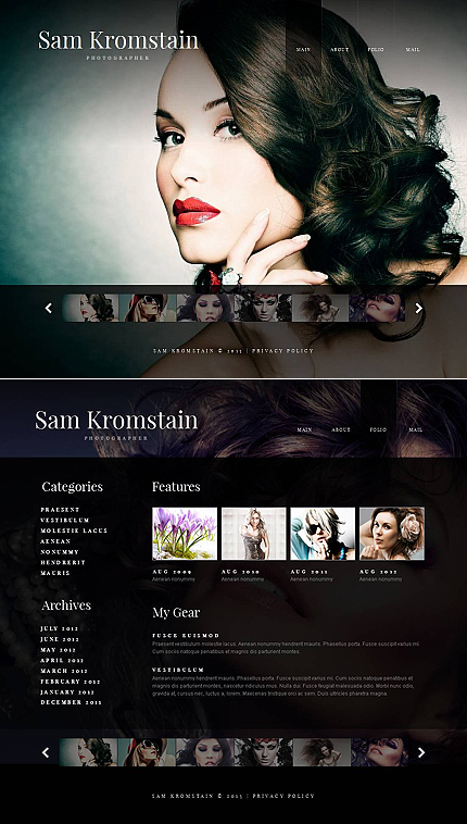 ADOBE Photoshop Template 44564 Home Page Screenshot