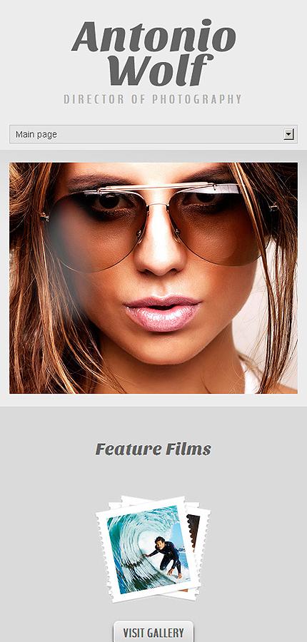 WordPress Theme/Template 44569 Main Page Screenshot