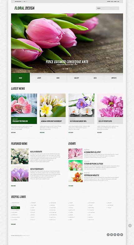 Website Template #44583