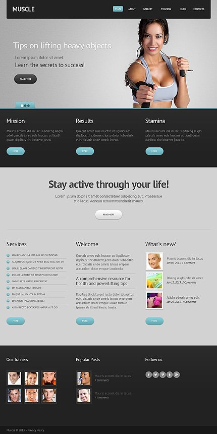 Joomla Theme/Template 44595 Main Page Screenshot