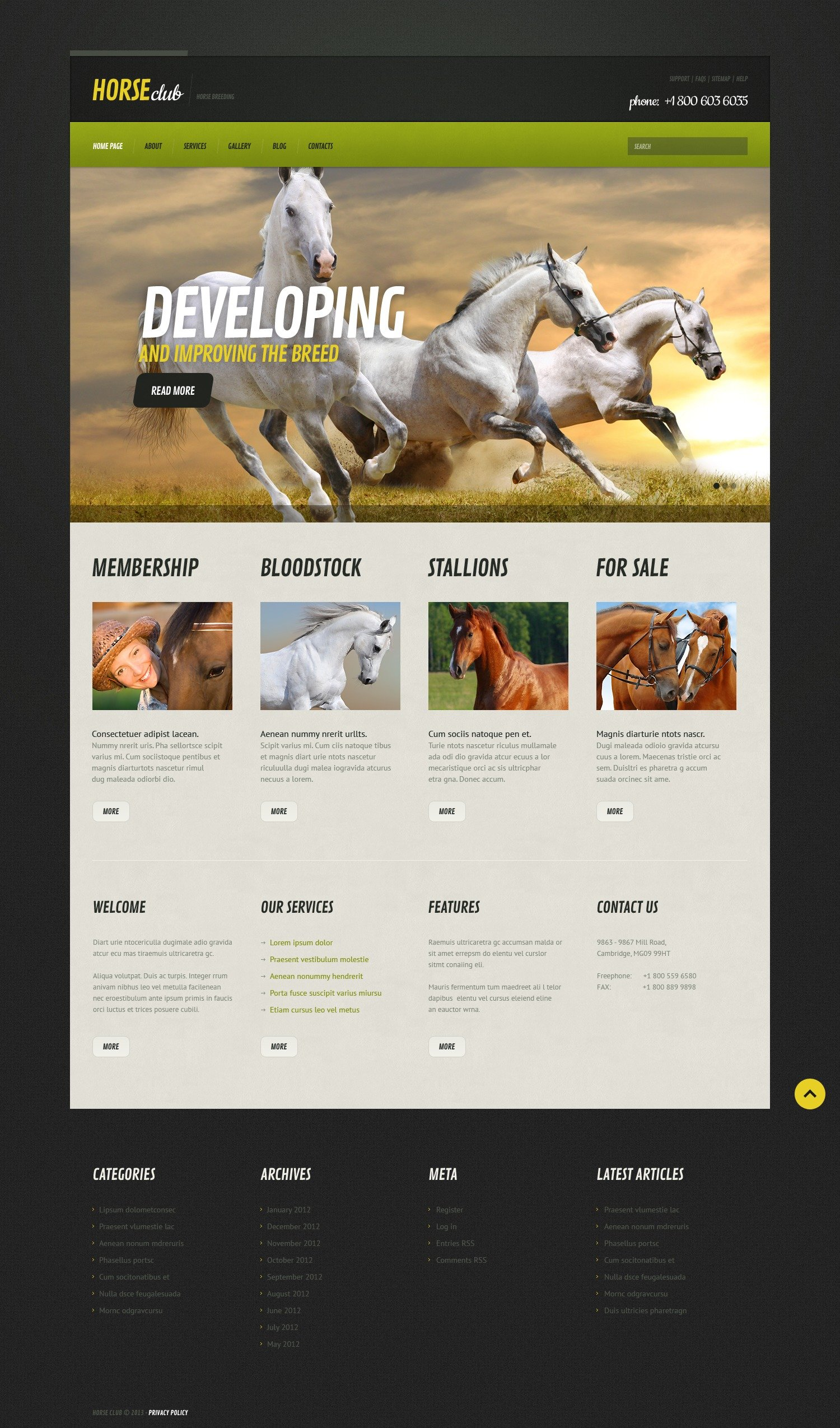 horse responsive wordpress theme  44818