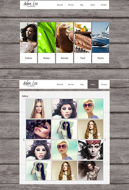 ADOBE Photoshop Template 44931 Home Page Screenshot