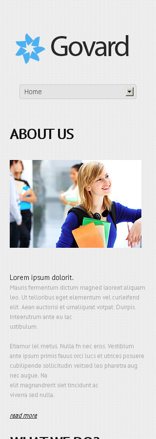 WordPress Theme/Template 45013 Main Page Screenshot