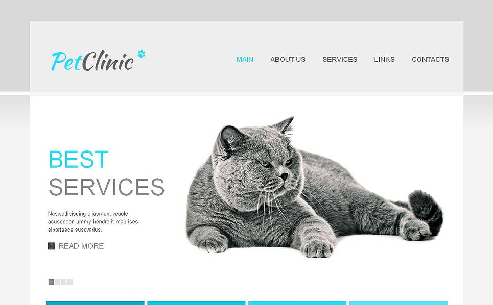 Premium Moto CMS HTML Template over Dierenarts New Screenshots BIG